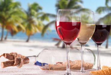 consejos para tomar vino en verano
