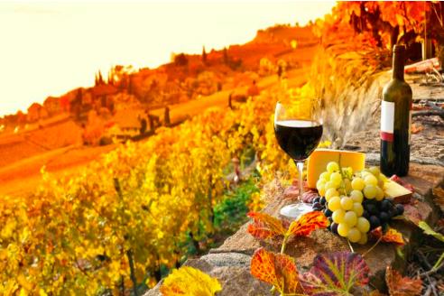 vinos famosos de toscana